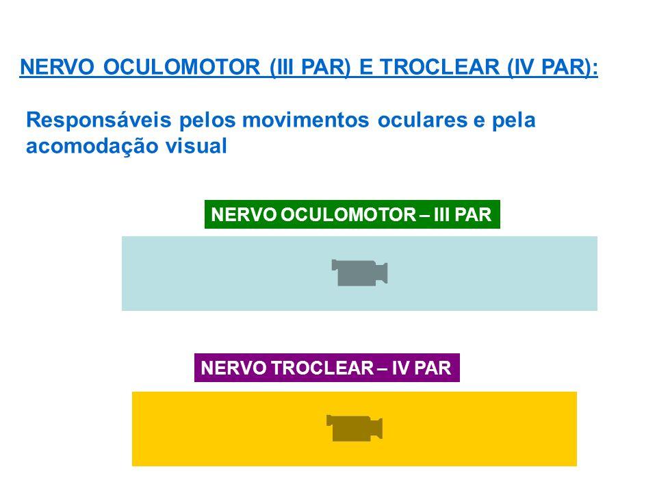NERVO OCULOMOTOR (III PAR) E TROCLEAR (IV PAR): Responsáveis pelos movimentos oculares e pela acomodação visual NERVO OCULOMOTOR – III PAR NERVO TROCLEAR – IV PAR