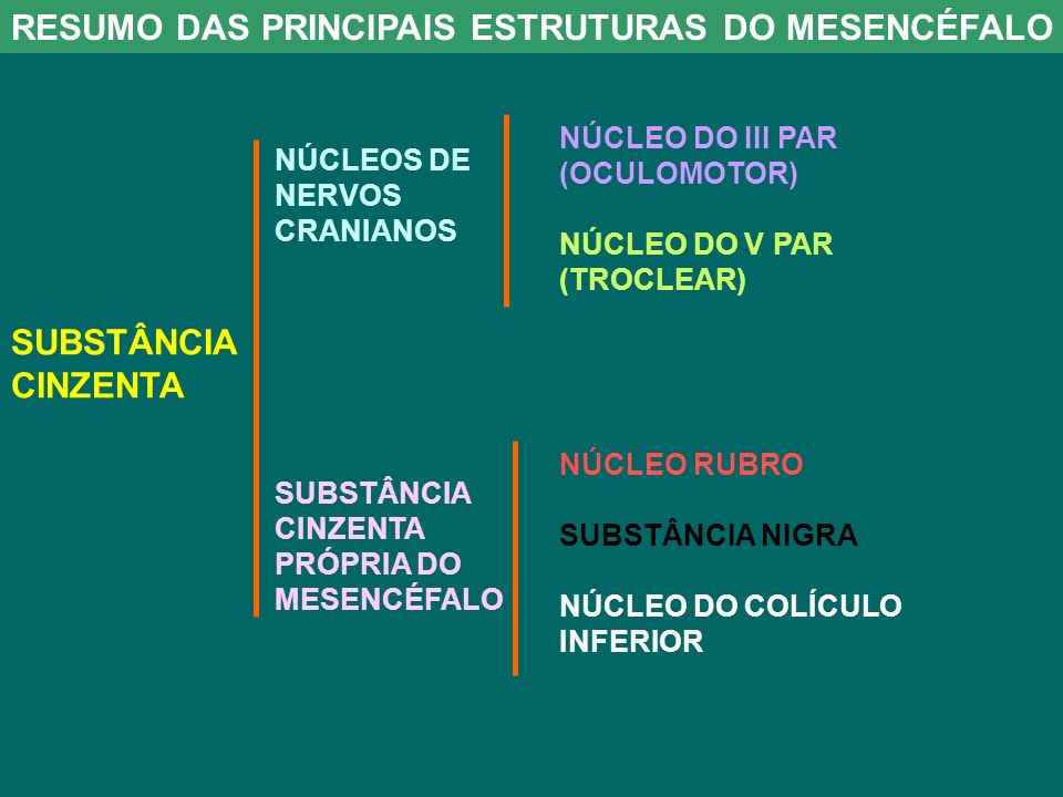 RESUMO DAS PRINCIPAIS ESTRUTURAS DO MESENCÉFALO SUBSTÂNCIA CINZENTA NÚCLEOS DE NERVOS CRANIANOS SUBSTÂNCIA CINZENTA PRÓPRIA DO MESENCÉFALO NÚCLEO DO III PAR (OCULOMOTOR) NÚCLEO DO V PAR (TROCLEAR) NÚCLEO RUBRO SUBSTÂNCIA NIGRA NÚCLEO DO COLÍCULO INFERIOR