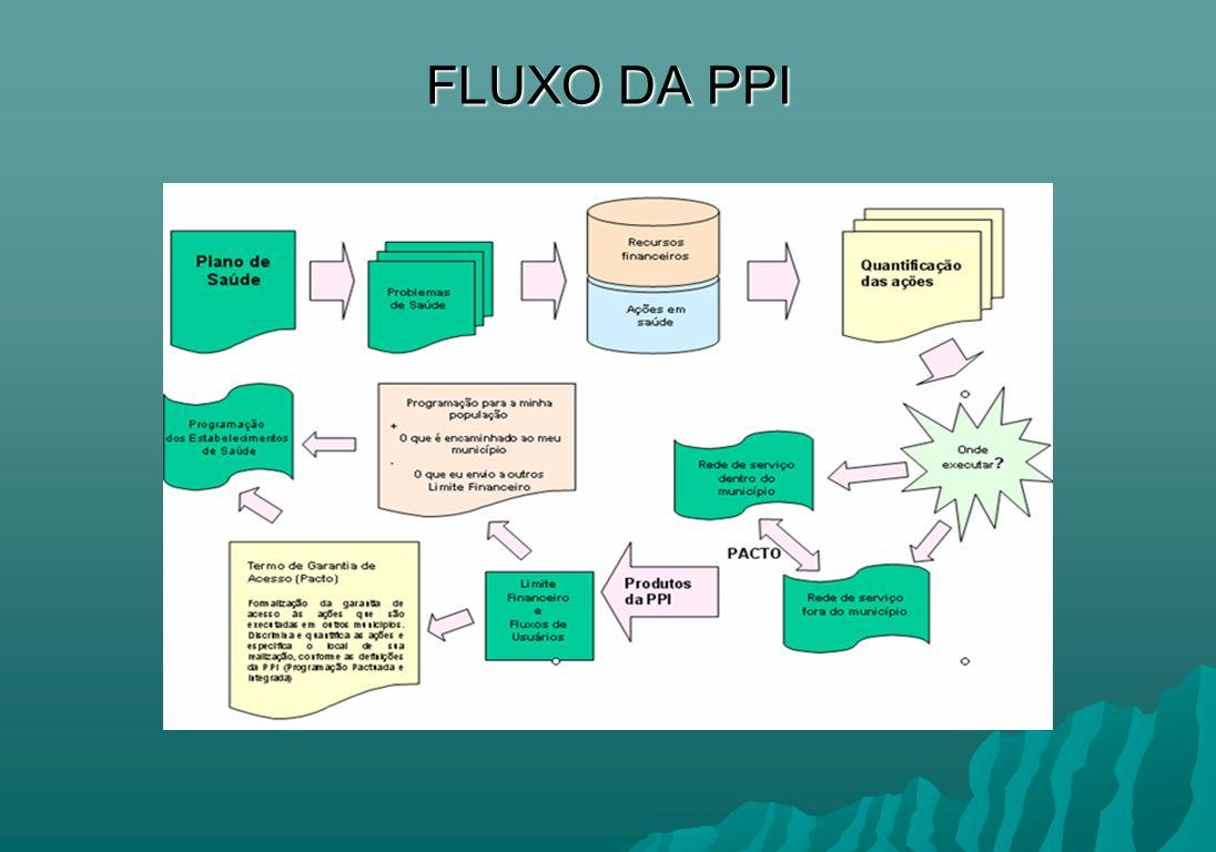 FLUXO DA PPI