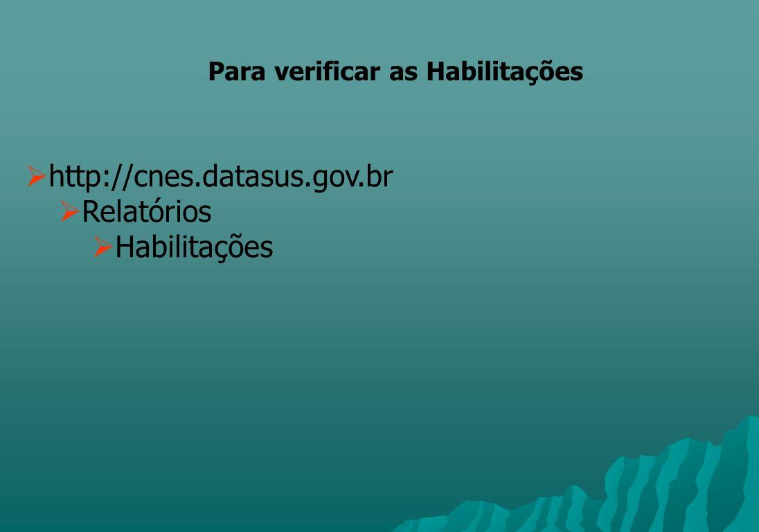 http://cnes.datasus.gov.br Relatórios Habilitações Para verificar as Habilitações