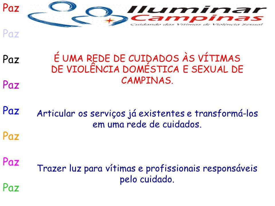Paz É UMA REDE DE CUIDADOS ÀS VÍTIMAS DE VIOLÊNCIA DOMÉSTICA E SEXUAL DE CAMPINAS. Articular os serviços já existentes e transformá-los em uma rede de