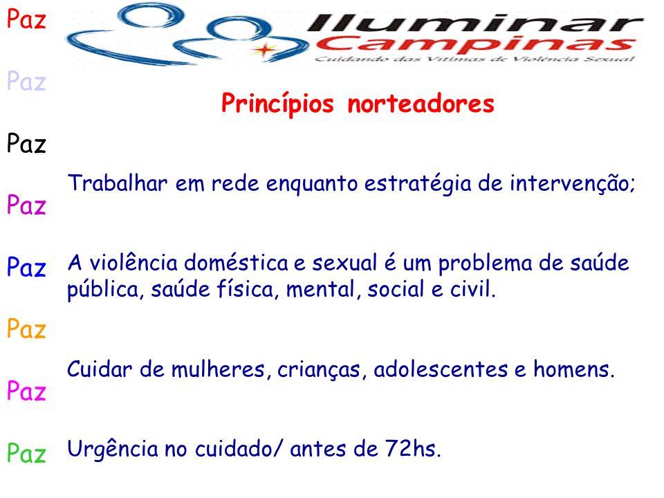 Paz Trabalhar em rede enquanto estratégia de intervenção; A violência doméstica e sexual é um problema de saúde pública, saúde física, mental, social