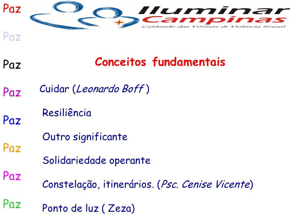 Paz Conceitos fundamentais Cuidar (Leonardo Boff ) Resiliência Outro significante Solidariedade operante Constelação, itinerários. (Psc. Cenise Vicent