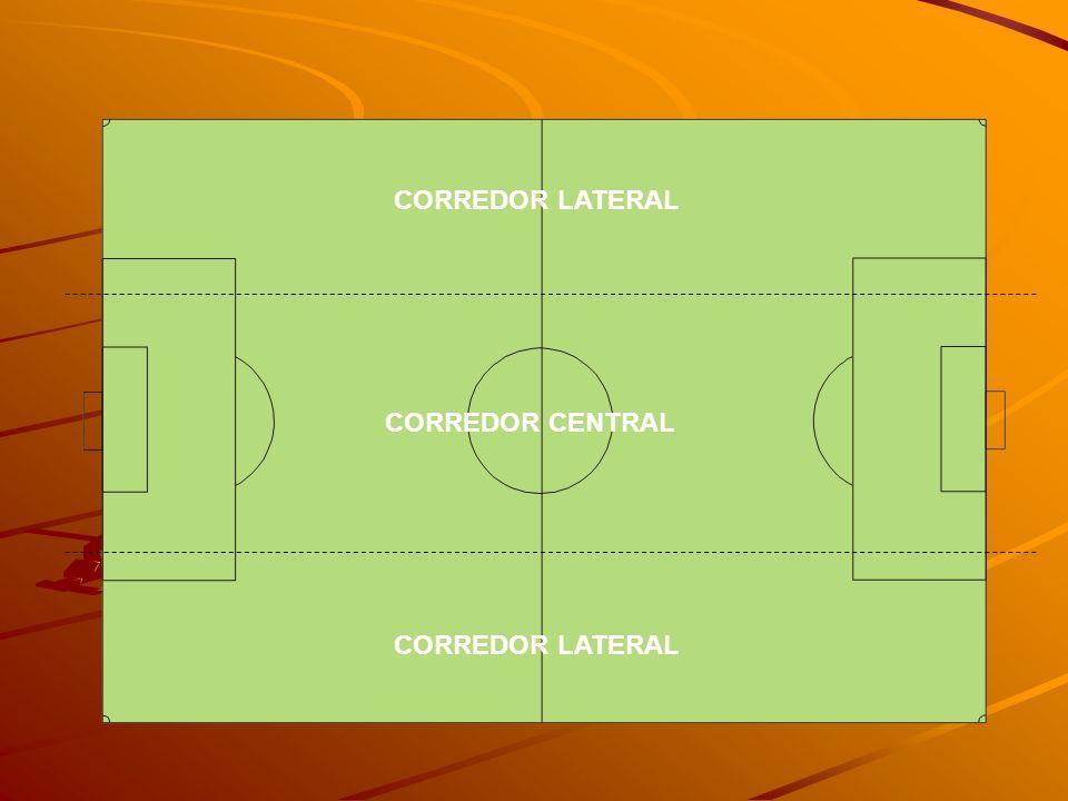 CORREDOR LATERAL CORREDOR CENTRAL CORREDOR LATERAL