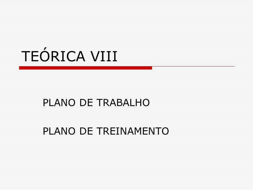 TEÓRICA VIII PLANO DE TRABALHO PLANO DE TREINAMENTO