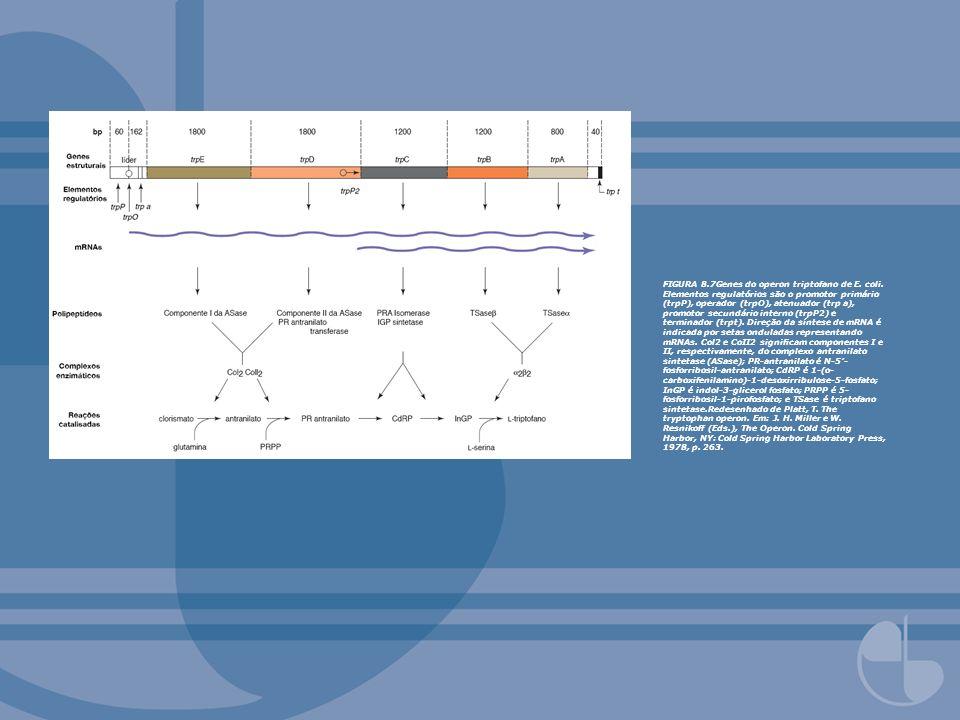 FIGURA 8.7Genes do operon triptofano de E. coli. Elementos regulatórios são o promotor primário (trpP), operador (trpO), atenuador (trp a), promotor s