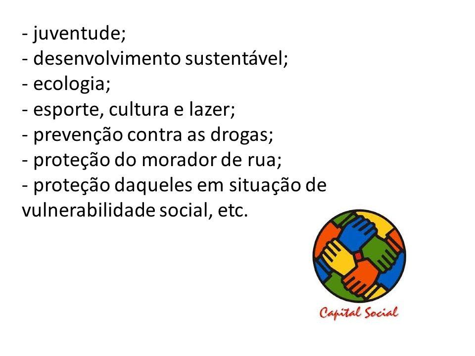 - juventude; - desenvolvimento sustentável; - ecologia; - esporte, cultura e lazer; - prevenção contra as drogas; - proteção do morador de rua; - prot