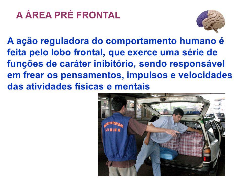 A ação reguladora do comportamento humano é feita pelo lobo frontal, que exerce uma série de funções de caráter inibitório, sendo responsável em frear