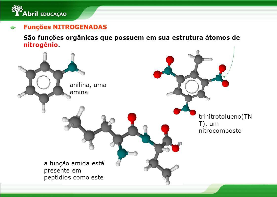 Funções NITROGENADAS São funções orgânicas que possuem em sua estrutura átomos de nitrogênio. anilina, uma amina trinitrotolueno(TN T), um nitrocompos