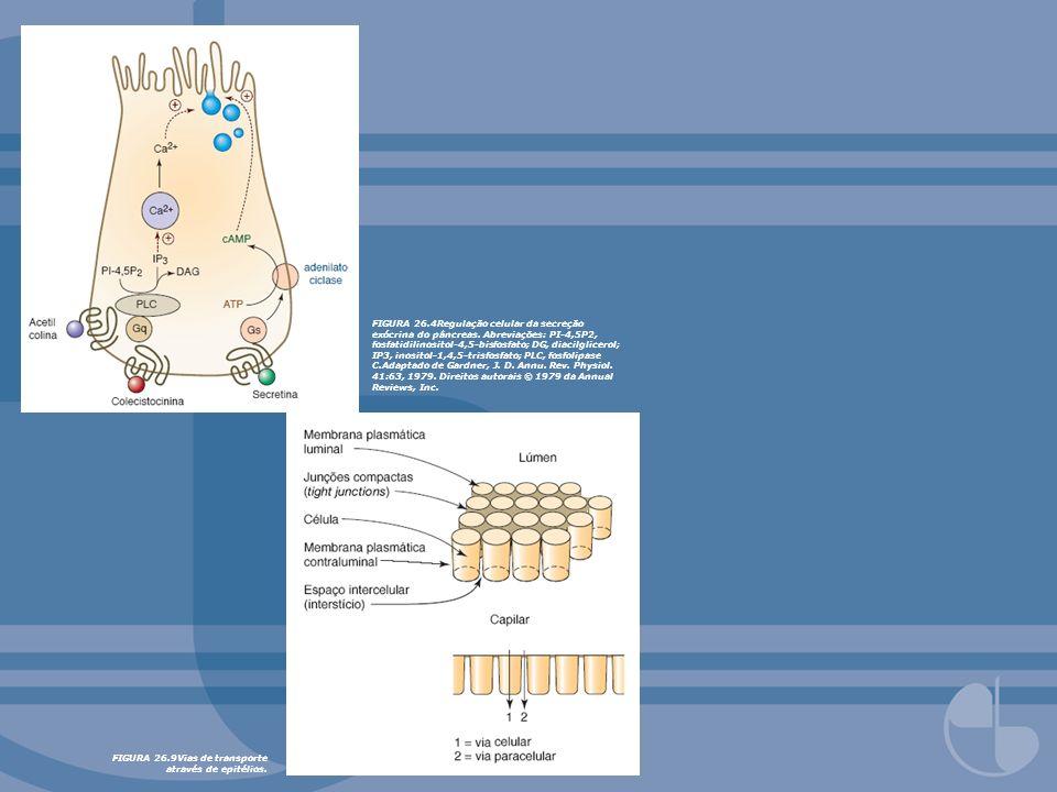 FIGURA 26.4Regulação celular da secreção exócrina do pâncreas. Abreviações: PI-4,5P2, fosfatidilinositol-4,5-bisfosfato; DG, diacilglicerol; IP3, inos