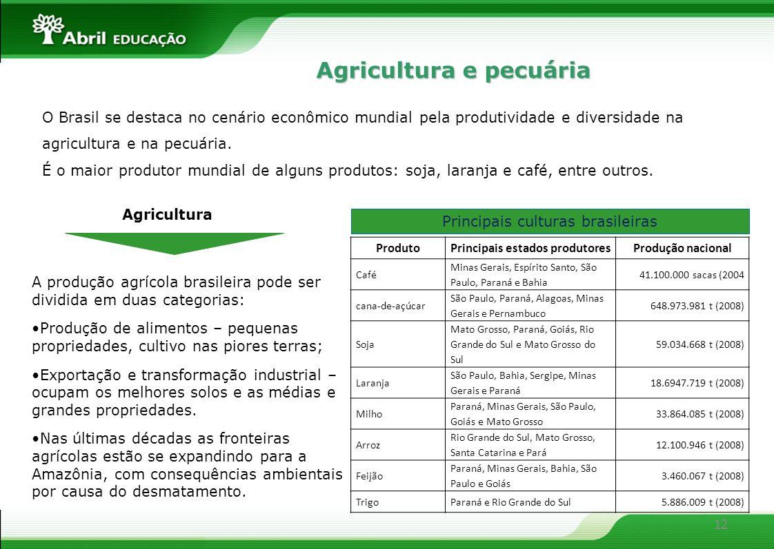 12 Agricultura e pecuária O Brasil se destaca no cenário econômico mundial pela produtividade e diversidade na agricultura e na pecuária. É o maior pr