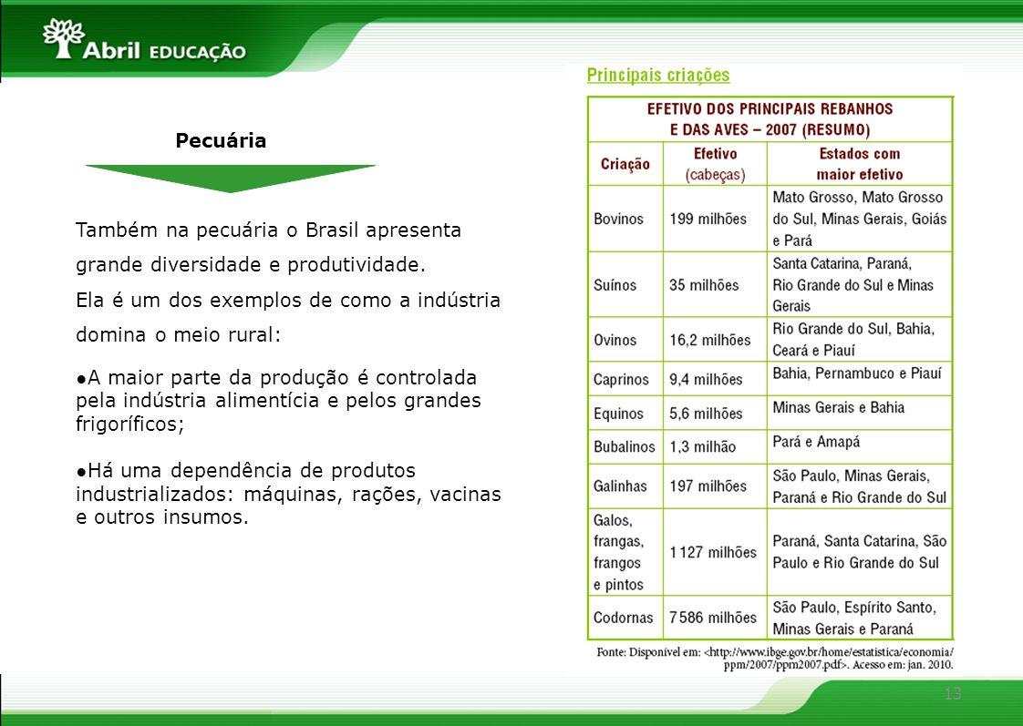 13 Pecuária Também na pecuária o Brasil apresenta grande diversidade e produtividade. Ela é um dos exemplos de como a indústria domina o meio rural: A