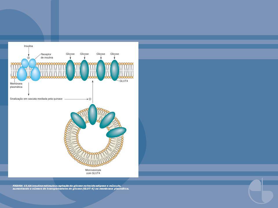 FIGURA 15.37A glicose 6-fosfato é hidrolisada pela glicose 6-fosfatase, localizada na superfície luminal do retículo endoplasmático.
