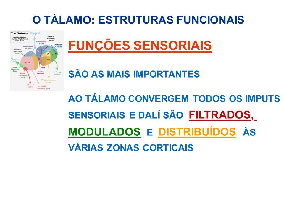 FUNÇÕES SENSORIAIS SÃO AS MAIS IMPORTANTES AO TÁLAMO CONVERGEM TODOS OS IMPUTS SENSORIAIS E DALÍ SÃO FILTRADOS, MODULADOS E DISTRIBUÍDOS ÀS VÁRIAS ZON