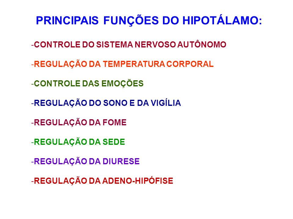 PRINCIPAIS FUNÇÕES DO HIPOTÁLAMO: -C-CONTROLE DO SISTEMA NERVOSO AUTÔNOMO -R-REGULAÇÃO DA TEMPERATURA CORPORAL -C-CONTROLE DAS EMOÇÕES -R-REGULAÇÃO DO