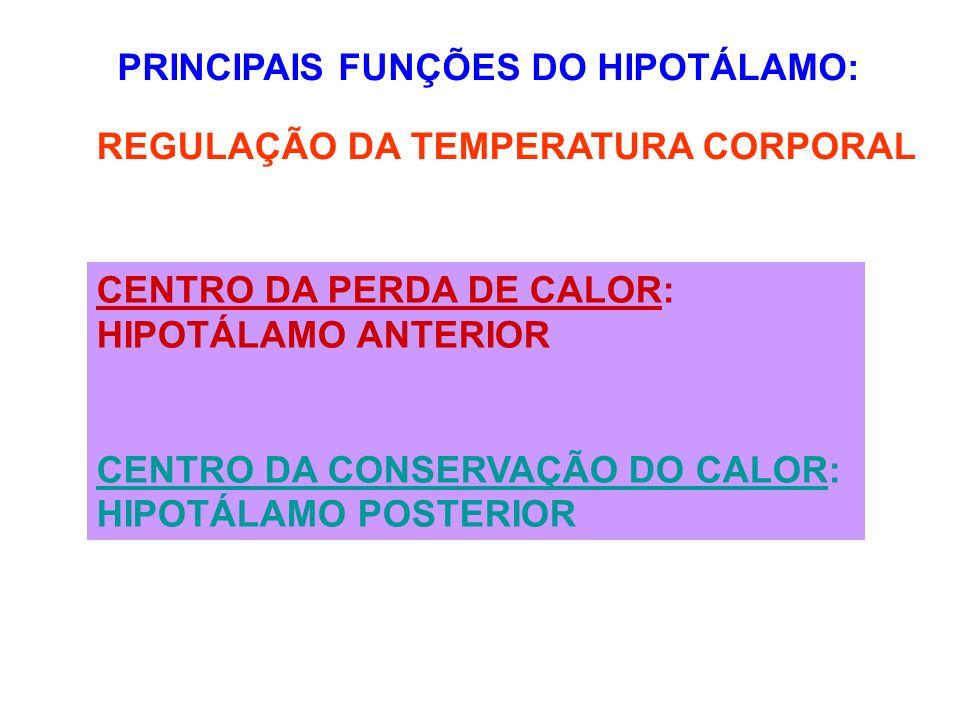 PRINCIPAIS FUNÇÕES DO HIPOTÁLAMO: REGULAÇÃO DA TEMPERATURA CORPORAL CENTRO DA PERDA DE CALOR: HIPOTÁLAMO ANTERIOR CENTRO DA CONSERVAÇÃO DO CALOR: HIPO