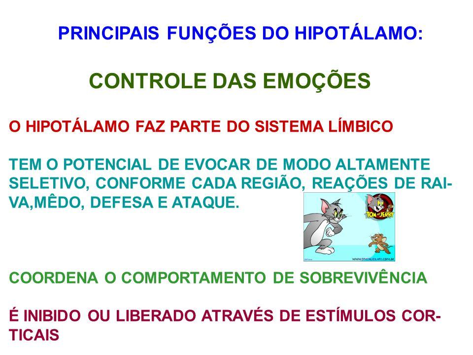 PRINCIPAIS FUNÇÕES DO HIPOTÁLAMO: CONTROLE DAS EMOÇÕES O HIPOTÁLAMO FAZ PARTE DO SISTEMA LÍMBICO TEM O POTENCIAL DE EVOCAR DE MODO ALTAMENTE SELETIVO,
