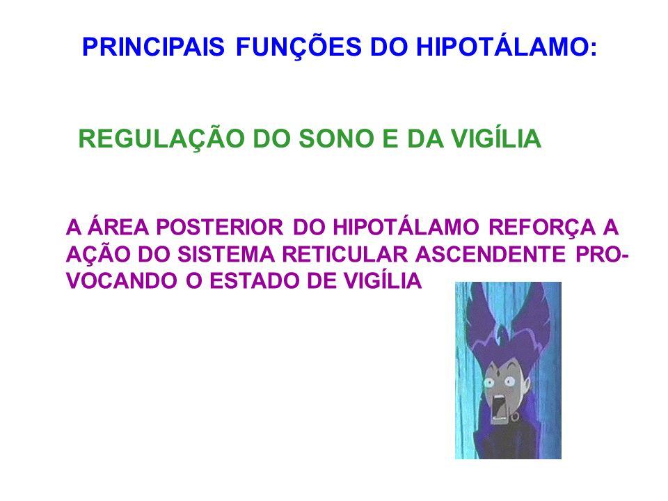 PRINCIPAIS FUNÇÕES DO HIPOTÁLAMO: REGULAÇÃO DO SONO E DA VIGÍLIA A ÁREA POSTERIOR DO HIPOTÁLAMO REFORÇA A AÇÃO DO SISTEMA RETICULAR ASCENDENTE PRO- VO