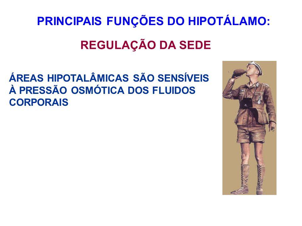 PRINCIPAIS FUNÇÕES DO HIPOTÁLAMO: REGULAÇÃO DA SEDE ÁREAS HIPOTALÂMICAS SÃO SENSÍVEIS À PRESSÃO OSMÓTICA DOS FLUIDOS CORPORAIS