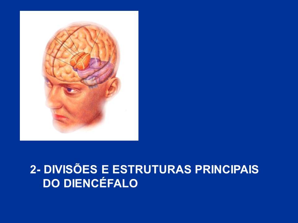2- DIVISÕES E ESTRUTURAS PRINCIPAIS DO DIENCÉFALO