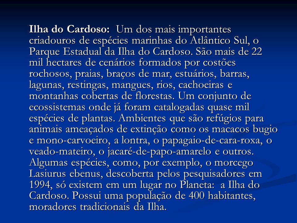 Ilha do Cardoso: Um dos mais importantes criadouros de espécies marinhas do Atlântico Sul, o Parque Estadual da Ilha do Cardoso. São mais de 22 mil he