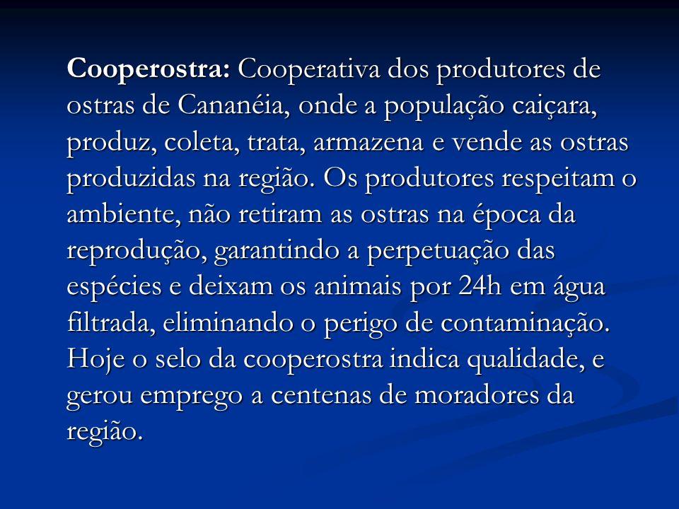 Cooperostra: Cooperativa dos produtores de ostras de Cananéia, onde a população caiçara, produz, coleta, trata, armazena e vende as ostras produzidas