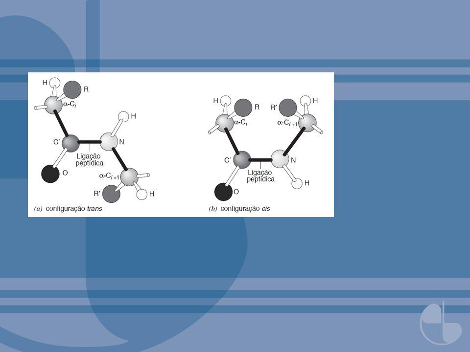 FIGURA 3.38Diagrama do colágeno demonstrando necessidade de glicinas a cada terceiro resíduo para permitir que diferentes cadeias quem muito próximas na estrutura.