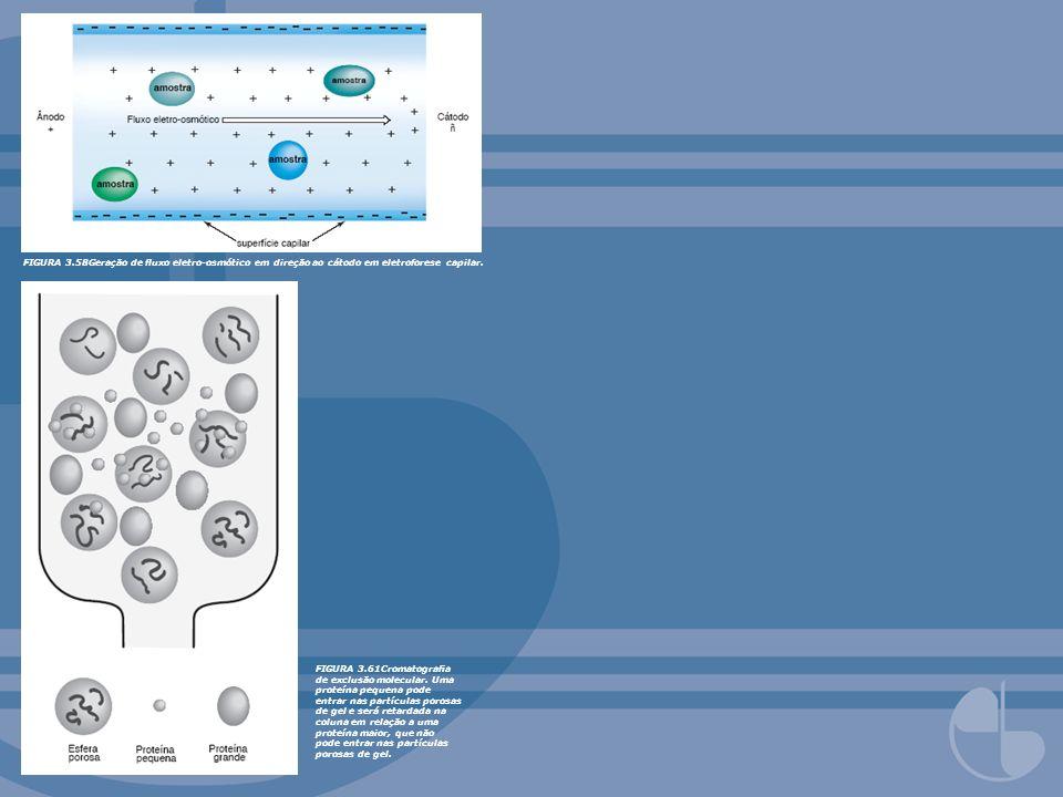 FIGURA 3.58Geração de uxo eletro-osmótico em direção ao cátodo em eletroforese capilar. FIGURA 3.61Cromatograa de exclusão molecular. Uma proteína peq