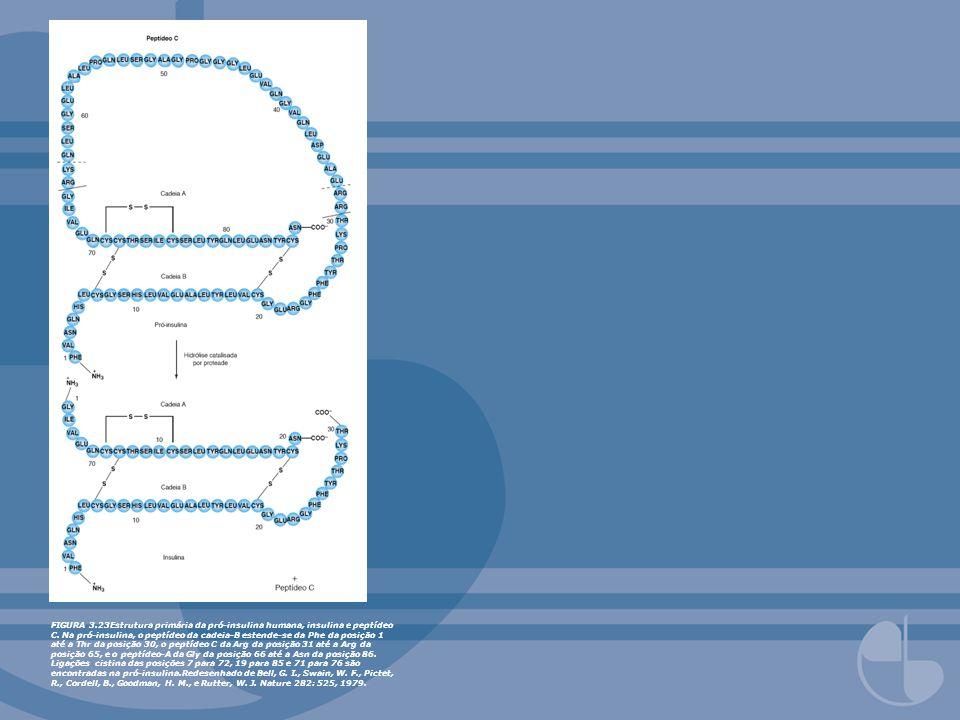 FIGURA 3.23Estrutura primária da pró-insulina humana, insulina e peptídeo C. Na pró-insulina, o peptídeo da cadeia-B estende-se da Phe da posição 1 at