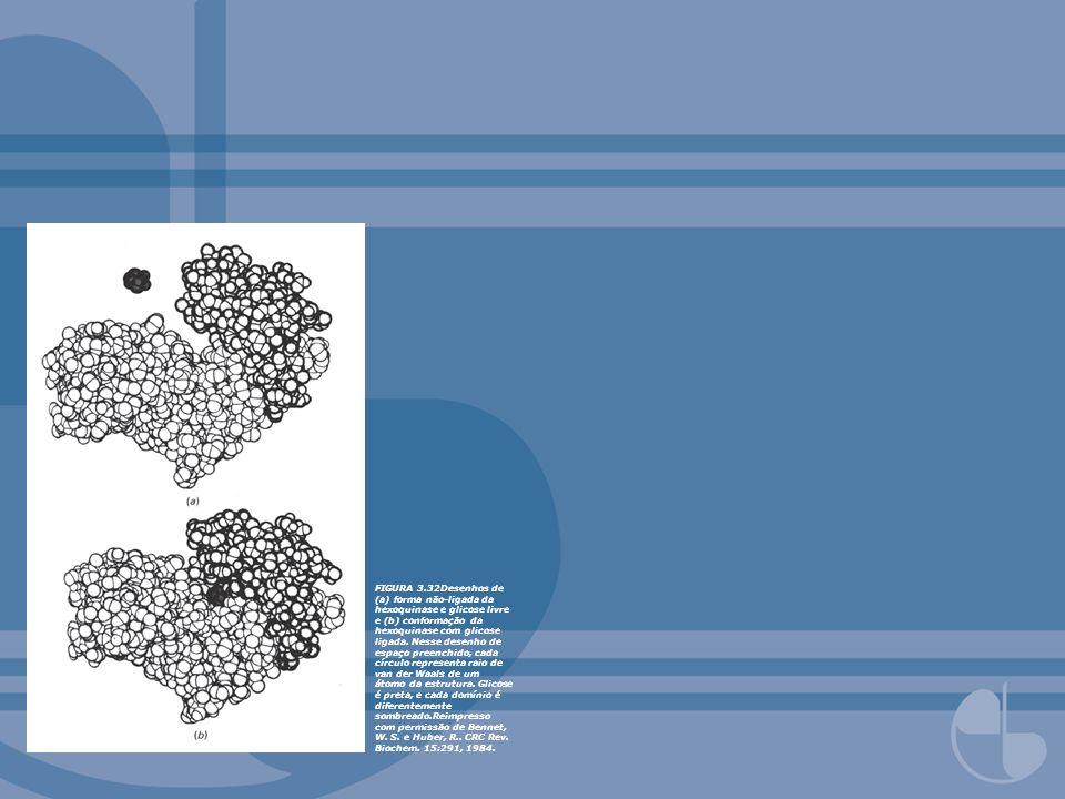 FIGURA 3.68Mapa de densidade eletrônica em resolução de 1,9-Å da região de sítio ativo da forma pró-enzima da tripsina.