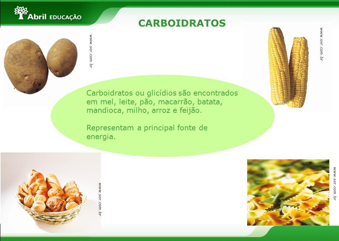 CARBOIDRATOS Carboidratos ou glicídios são encontrados em mel, leite, pão, macarrão, batata, mandioca, milho, arroz e feijão. Representam a principal
