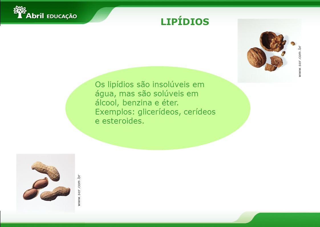 LIPÍDIOS www.ser.com.br Os lipídios são insolúveis em água, mas são solúveis em álcool, benzina e éter. Exemplos: glicerídeos, cerídeos e esteroides.