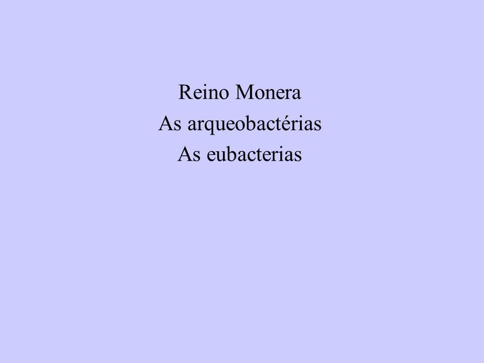 Reino Monera As arqueobactérias As eubacterias