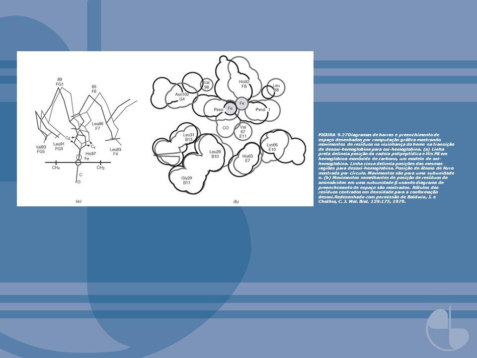 FIGURA 9.27Diagramas de barras e preenchimento de espaço desenhados por computação gráca mostrando movimentos de resíduos na vizinhança do heme na tra