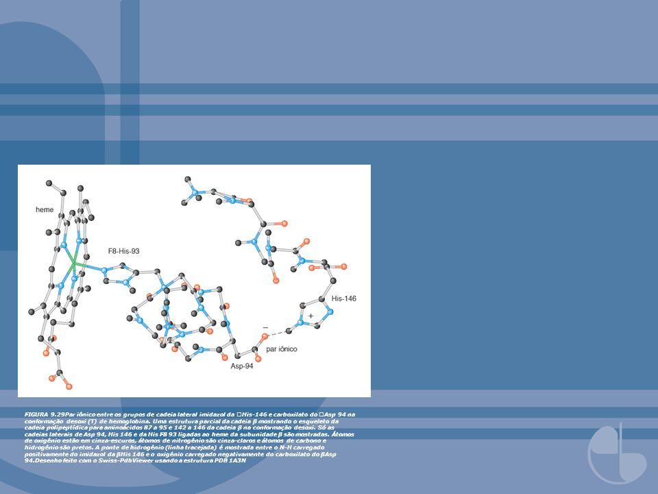 FIGURA 9.29Par iônico entre os grupos de cadeia lateral imidazol da His-146 e carboxilato do Asp 94 na conformação desoxi (T) de hemoglobina. Uma estr