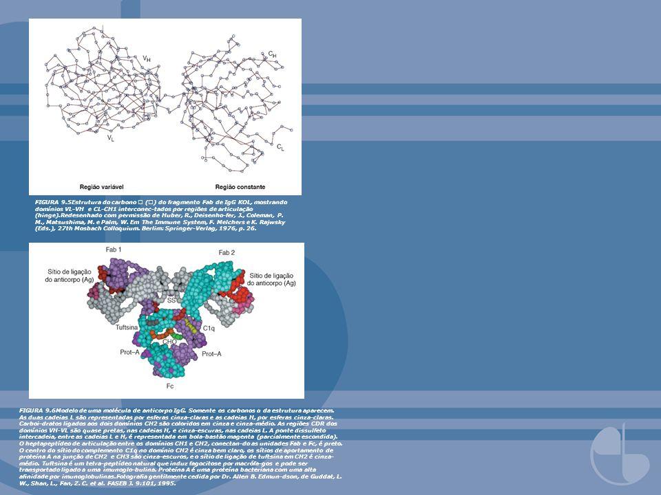 FIGURA 9.5Estrutura do carbono () do fragmento Fab de IgG KOL, mostrando domínios VL-VH e CL-CH1 interconec-tados por regiões de articulação (hinge).R