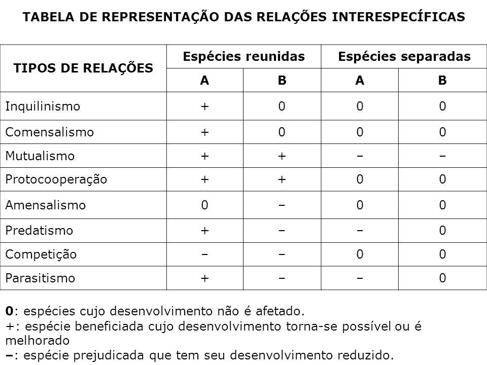 TABELA DE REPRESENTAÇÃO DAS RELAÇÕES INTERESPECÍFICAS TIPOS DE RELAÇÕES Espécies reunidasEspécies separadas ABAB Inquilinismo+000 Comensalismo+000 Mut