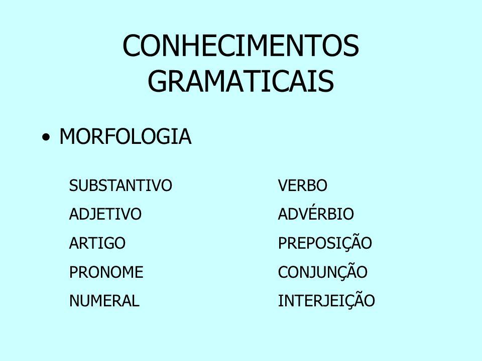 CONHECIMENTOS GRAMATICAIS SINTAXE –Sujeito / Predicado –Complementos Verbais (OD / OI) –Complementos Nominais (CN) –Agente da Passiva –Adjunto Adnominal (aa) –Adjunto Adverbial (AA) –Predicativos (OS / PO) –Aposto –Vocativo