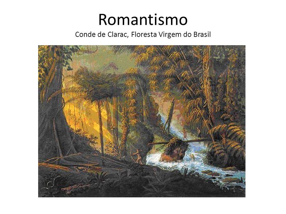 Romantismo Conde de Clarac, Floresta Virgem do Brasil