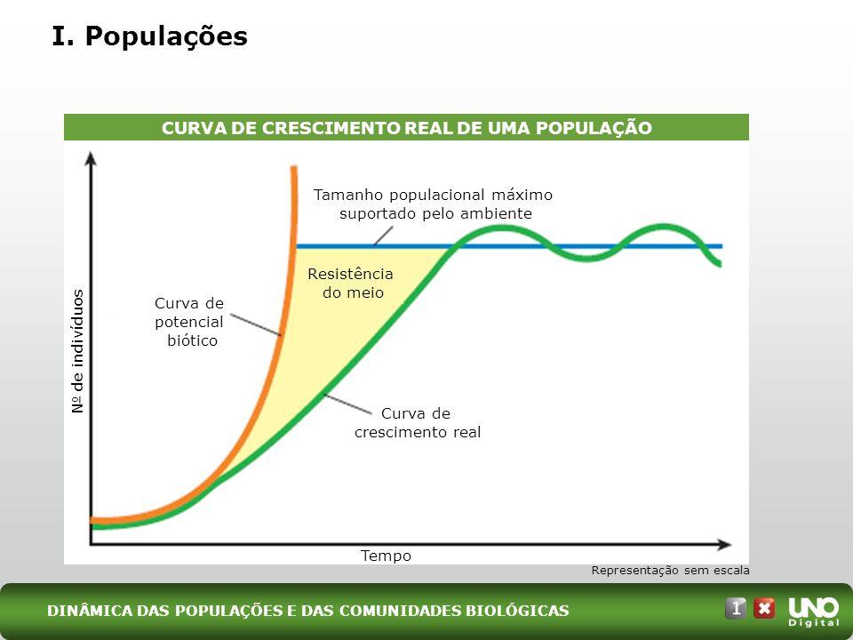 I. Populações CURVA DE CRESCIMENTO REAL DE UMA POPULAÇÃO Representação sem escala Tamanho populacional máximo suportado pelo ambiente Curva de crescim