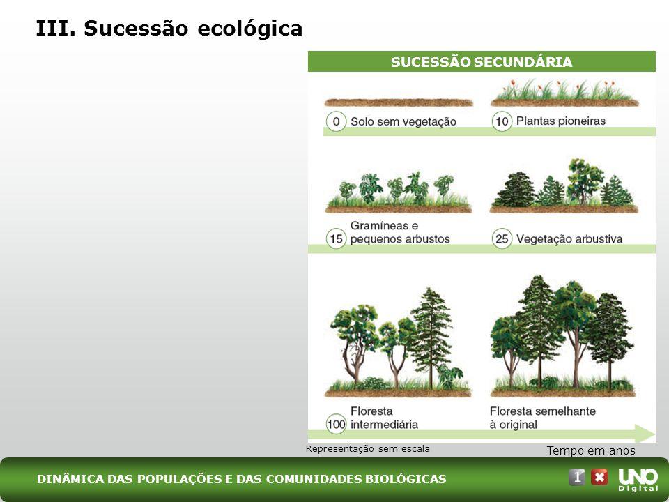 III. Sucessão ecológica Representação sem escala Tempo em anos SUCESSÃO SECUNDÁRIA DINÂMICA DAS POPULAÇÕES E DAS COMUNIDADES BIOLÓGICAS