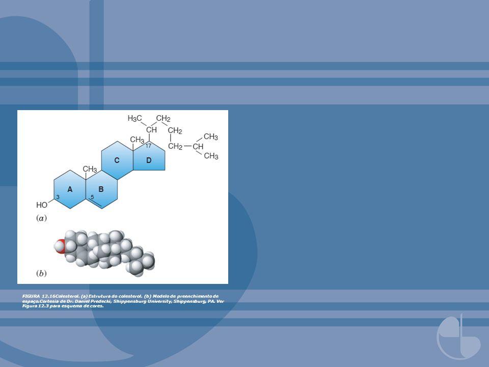 FIGURA 12.16Colesterol. (a) Estrutura do colesterol. (b) Modelo de preenchimento de espaço.Cortesia de Dr. Daniel Predecki, Shippensburg University, S