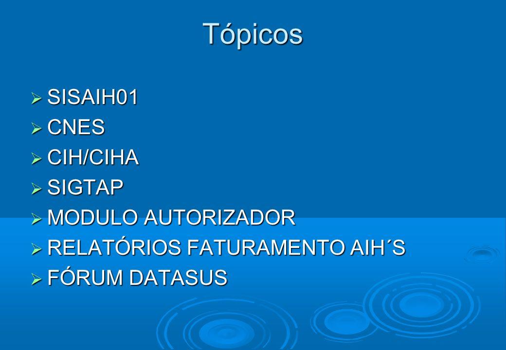 sihd.datasus.gov.br