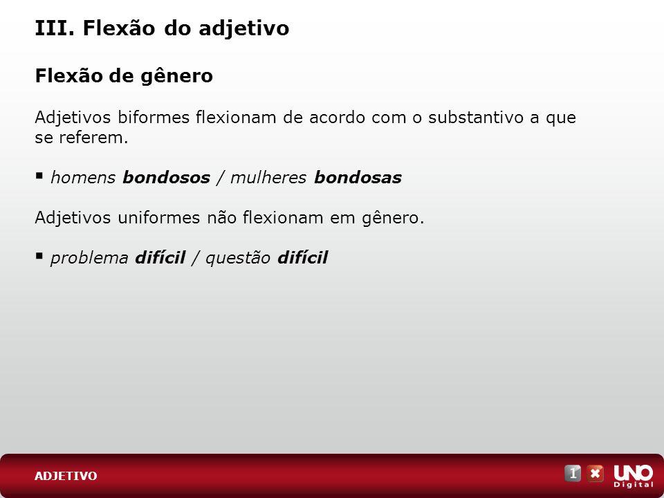 III. Flexão do adjetivo Flexão de gênero Adjetivos biformes flexionam de acordo com o substantivo a que se referem. homens bondosos / mulheres bondosa