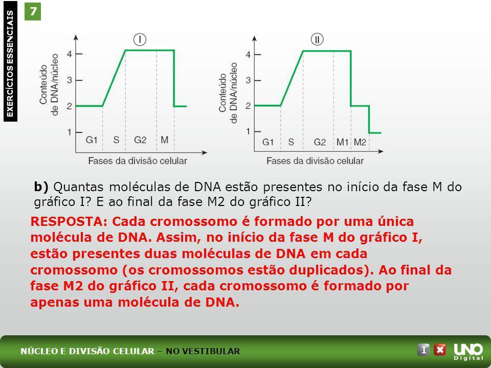 7 EXERC Í CIOS ESSENCIAIS b) Quantas moléculas de DNA estão presentes no início da fase M do gráfico I? E ao final da fase M2 do gráfico II? RESPOSTA: