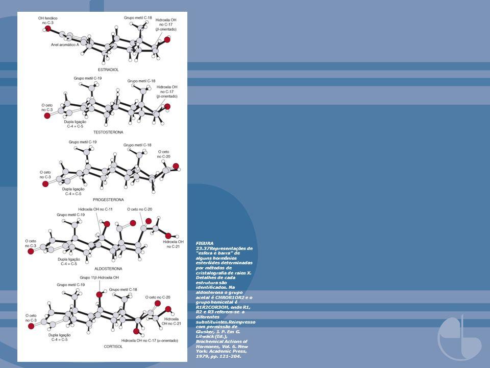 FIGURA 23.37Representações de esfera e barra de alguns hormônios esteróides determinadas por métodos de cristalograa de raios X. Detalhes de cada estr
