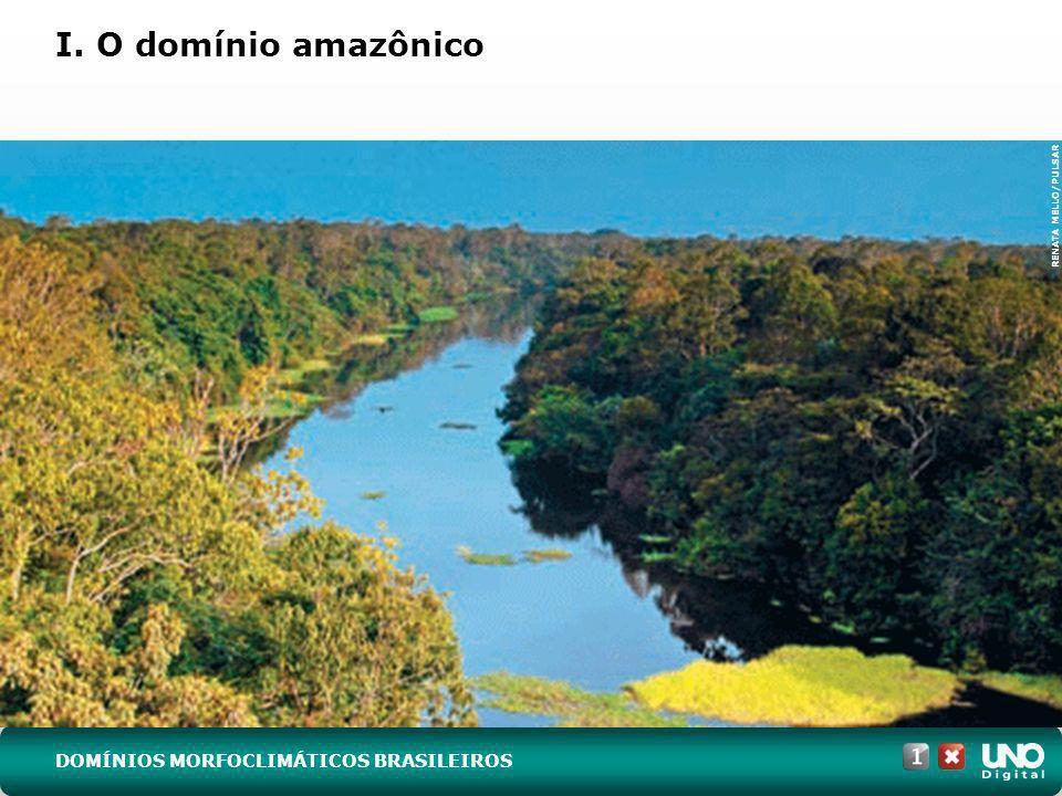 (UFRGS-RS) Observe os perfis de solo 1, 2 e 3, característicos de três dos domínios morfoclimáticos existentes no Brasil.