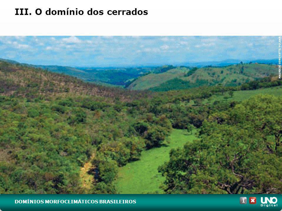 III. O domínio dos cerrados MAURICIO SIMONETTI/PULSAR DOMÍNIOS MORFOCLIMÁTICOS BRASILEIROS