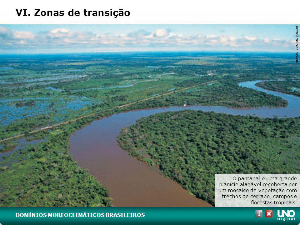 VI. Zonas de transição RENATO SOARES/PULSAR O pantanal é uma grande planície alagável recoberta por um mosaico de vegetação com trechos de cerrado, ca