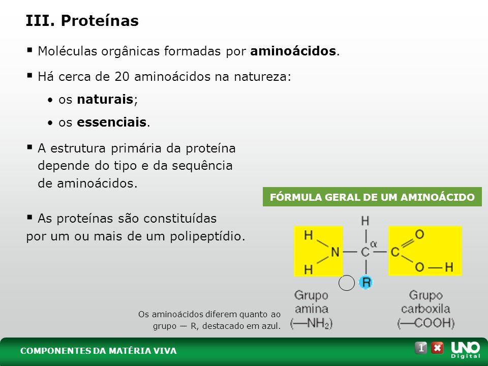 III. Proteínas Moléculas orgânicas formadas por aminoácidos. Há cerca de 20 aminoácidos na natureza: os naturais; os essenciais. A estrutura primária